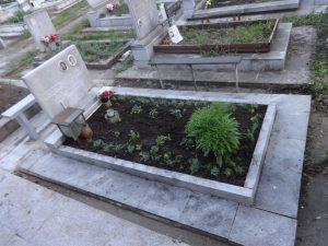 поливане, засаждане, поставяне на цветя